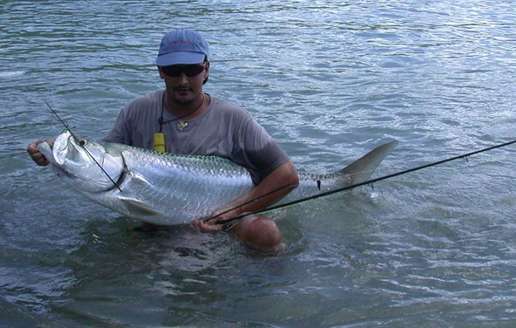 Broken Flyrod Catching Big Bonita Springs Tarpon