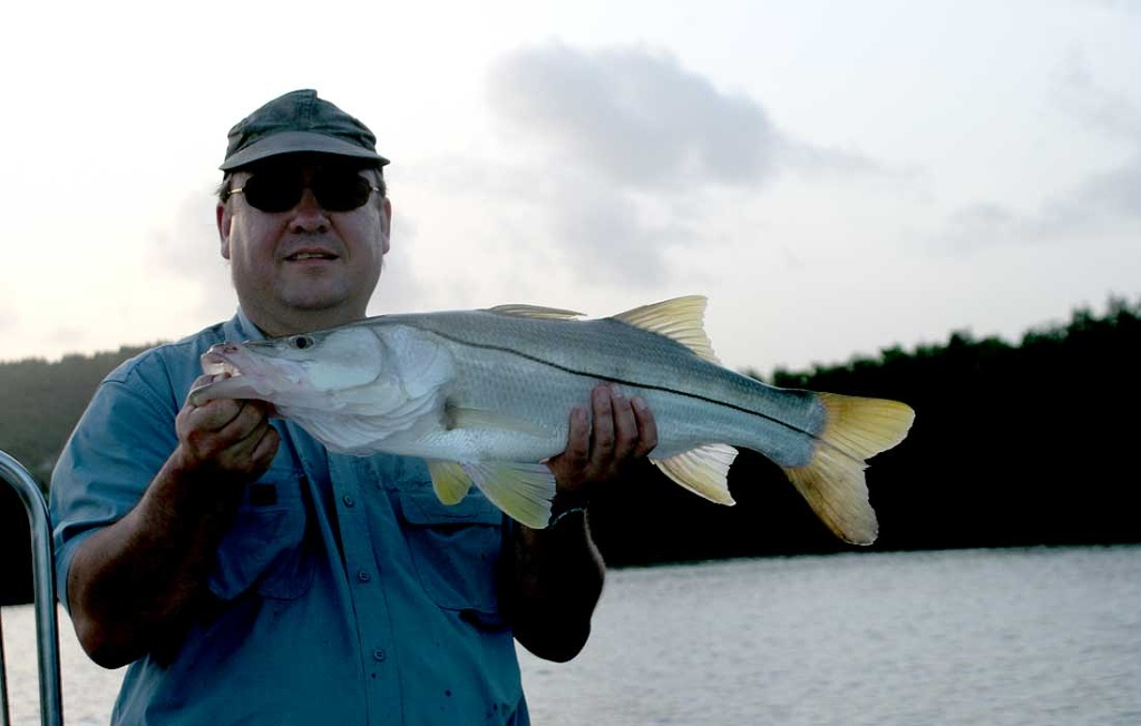 Early Am Bonita Springs Snook