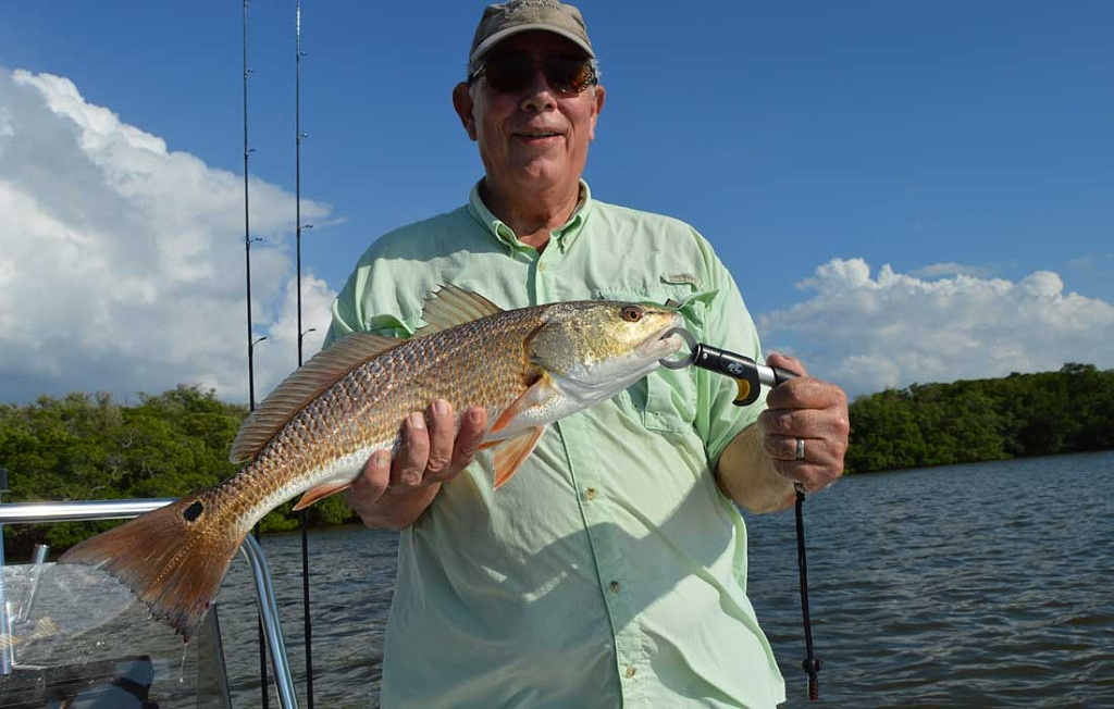 First Big Estero Bay Redfish
