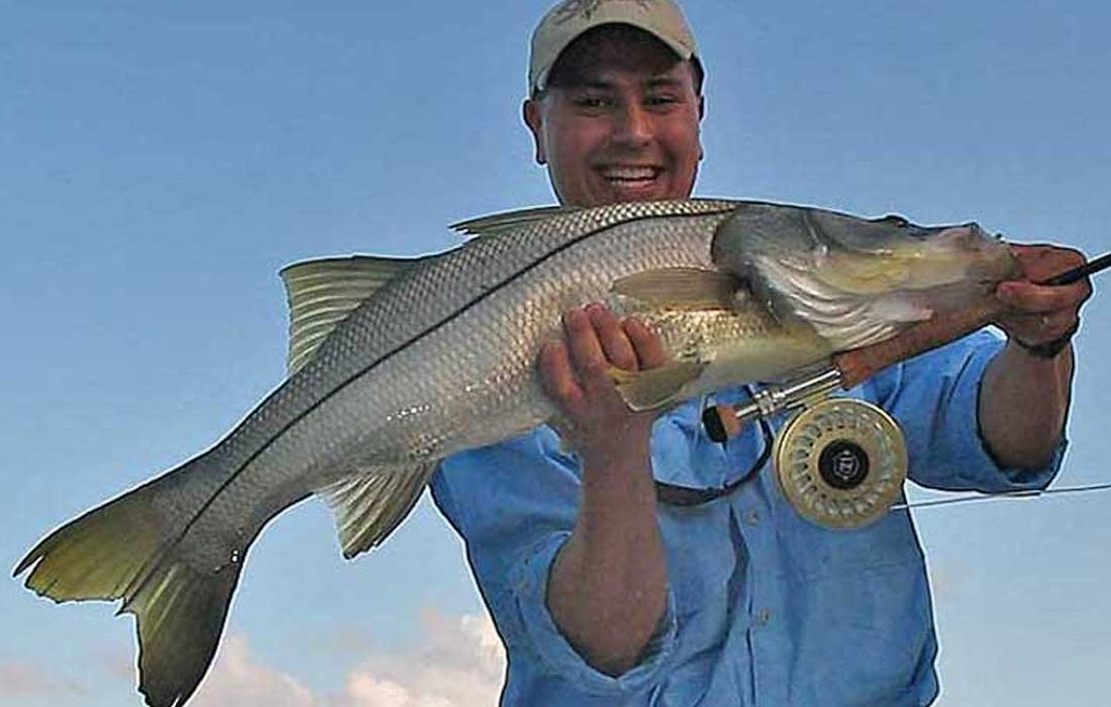 Giant Snook On Flyrod